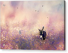 Acrylic Print featuring the photograph Flowers For Breakfast by Diane Schuster