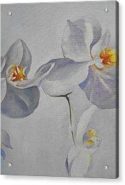 Flowers Frame 2 Acrylic Print