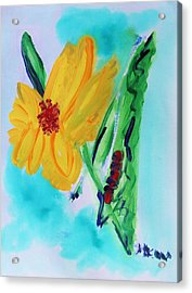 Flowers From Eden 1 Acrylic Print by Mary Carol Williams