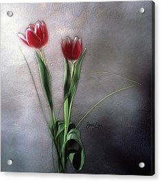 Flowers In Light Acrylic Print by Jack Eadon