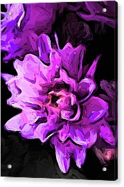 Flowers Of Lavender And Pink 1 Acrylic Print