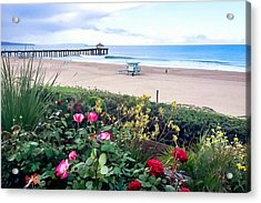 Flowers Of Manhattan Beach Acrylic Print