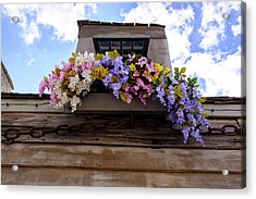 Flowers On A Rooftop Balcony In Saint Augustine Florida Acrylic Print