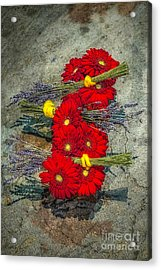 Acrylic Print featuring the photograph Flowers On Rocks by Nick Zelinsky