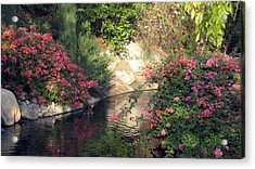 Acrylic Print featuring the photograph Flowers Over Pond by Amanda Eberly-Kudamik