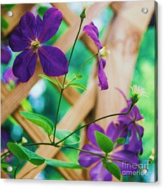 Acrylic Print featuring the painting Flowers Purple by Eric  Schiabor