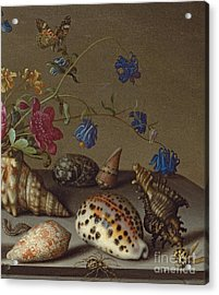 Flowers, Shells And Insects On A Stone Ledge Acrylic Print by Balthasar van der Ast