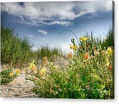 Flowery Dunes Acrylic Print