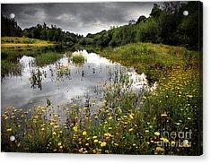 Flowery Lake Acrylic Print