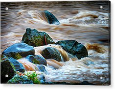 Acrylic Print featuring the photograph Flowing Amber by Dee Browning