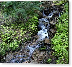 Acrylic Print featuring the photograph Flowing Creek by Ben Upham III