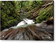 Flowing Downstream Waterfall Art By Kaylyn Franks Acrylic Print