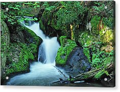 Flowing Softly Acrylic Print by Bill Morgenstern