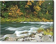 Flowing Umpqua River Acrylic Print by Tyra  OBryant