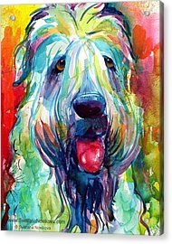 Fluffy Wheaten Terrier Portrait By Acrylic Print