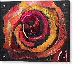 Fluorescent Rose Acrylic Print
