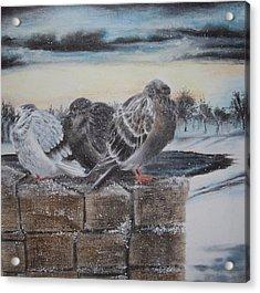 Flurries Acrylic Print by Kathleen Romana
