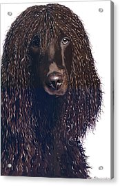 Flurry Acrylic Print