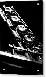 Flute Series IIi Acrylic Print