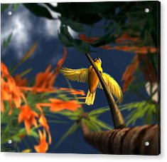 Flutter Acrylic Print by Monroe Snook