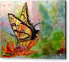 Flutterby - Watercolor Acrylic Print by Donna Hanna