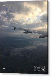 Fly Away Acrylic Print by Liesl Marelli