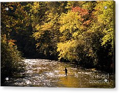 Acrylic Print featuring the photograph Fly Fisherman On The Tellico - D010008 by Daniel Dempster