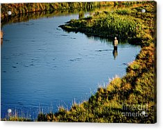 Acrylic Print featuring the photograph Fly Fishing  by Scott Kemper