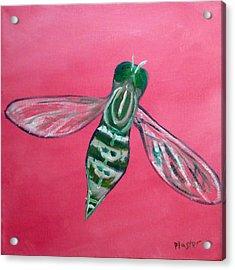 Fly North Acrylic Print