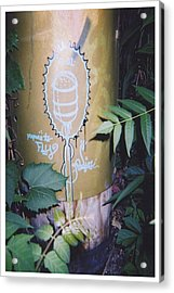 Fly Acrylic Print by Richard N Watkins