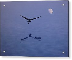 Fly To The Moon Acrylic Print by Eric Workman