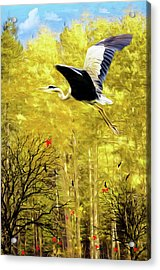 Flying Against The Wind Acrylic Print