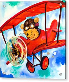 Flying Bear Acrylic Print by Scott Nelson