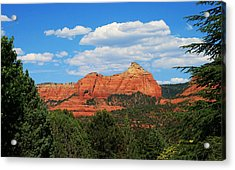 Flying Buttress Acrylic Print