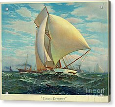 Acrylic Print featuring the photograph Flying Defender 1895 by Padre Art