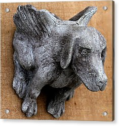 Flying Dog Gargoyle Acrylic Print by Katia Weyher