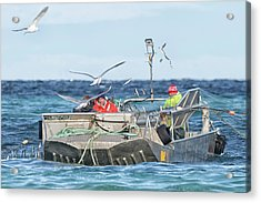 Acrylic Print featuring the photograph Flying Fish by Randy Hall