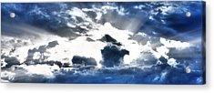 Acrylic Print featuring the photograph Flying High by Anthony Rego