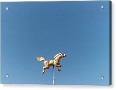 Flying Horse Chattanooga Acrylic Print by Jake Hartz
