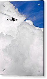 Flying In The Storm Acrylic Print by Steve Shockley