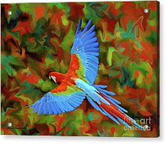 Flying Parrot Acrylic Print