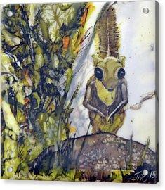 Flying Squirrel Acrylic Print