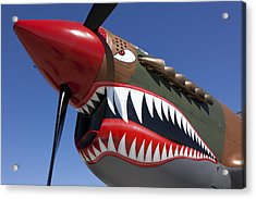 Flying Tiger Plane Acrylic Print by Garry Gay