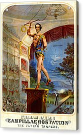 Acrylic Print featuring the photograph Flying Trapeze 1850 by Padre Art