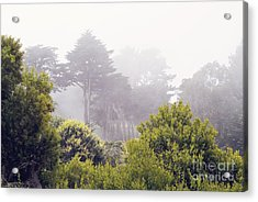 Acrylic Print featuring the photograph Fog At Lands End by Cindy Garber Iverson