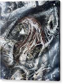Fog Acrylic Print by David H Frantz