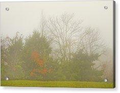 Fog In Autumn Acrylic Print
