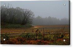 Fog In The Field Acrylic Print