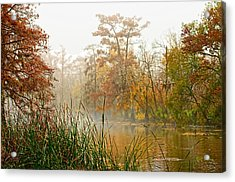 Fog On The Bayou Acrylic Print by Bill Perry