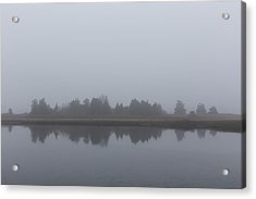 Acrylic Print featuring the photograph Fog On The Marsh by Andrew Pacheco